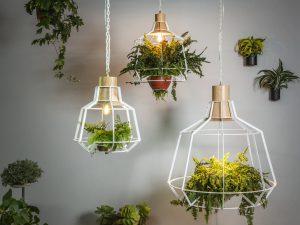 Urbanic Green Collection